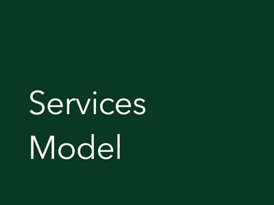 Services and Consulting Financial Model
